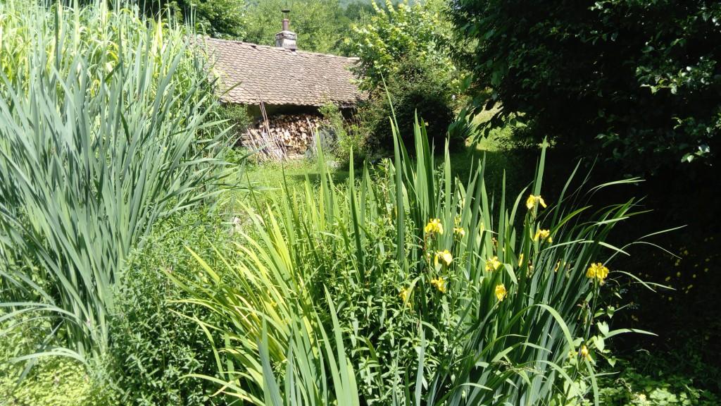 Visite de site à Quaix en Chartreuse